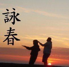 Wing Chun Art Kung Fu